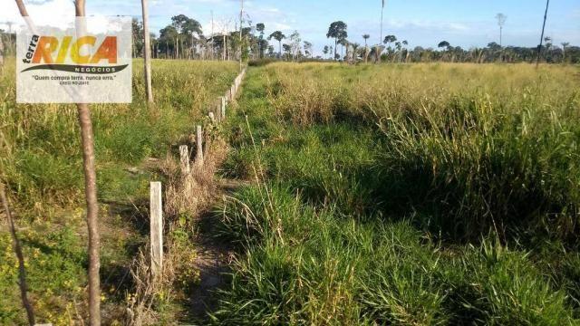 Fazenda com 140 Hectares em Candeias do Jamari/RO à venda, a 14 km da cidade - Foto 13