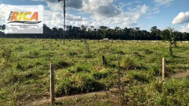 Fazenda com 140 Hectares em Candeias do Jamari/RO à venda, a 14 km da cidade - Foto 10
