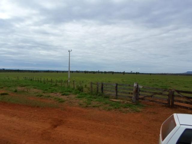 Fazenda 15000 hectares em vila bela, ha 60 km ponte e Lacerda - Foto 2