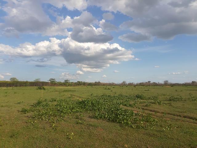 Vendo fazenda em crateus ce ou troco - Foto 6