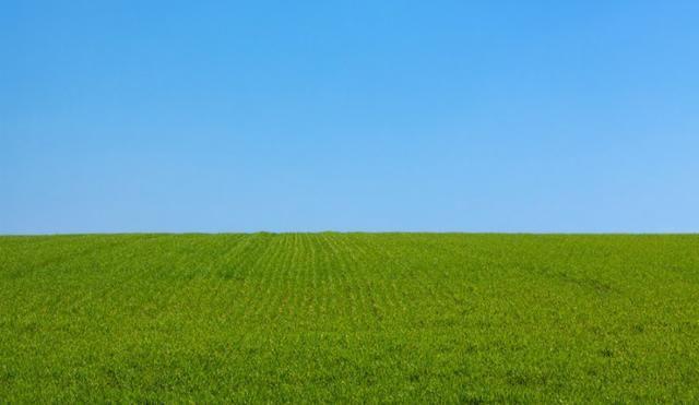 Busco Propriedades para Arrendamento - Propriedade Rural - Ótimo Negócio