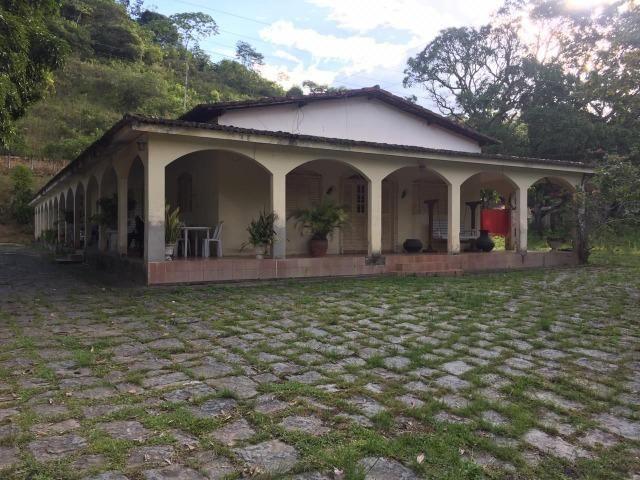 Vendo Chácara em Ribeirão PE - 10 hectares - Foto 4