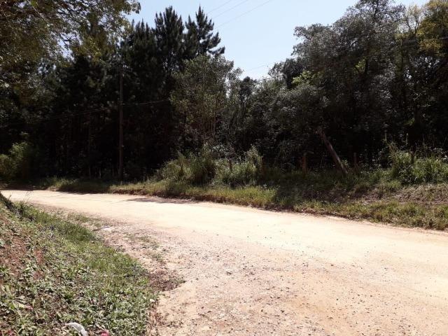 Chácara com 39.631m2 em Campina Grande do Sul - Aceito Imóvel Com Volta - Foto 17