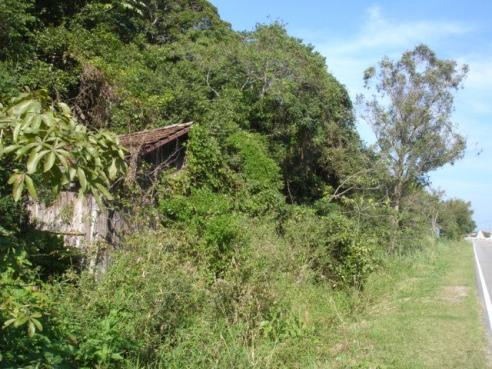Terreno, Pântano do Sul, Florianópolis-SC - Foto 4