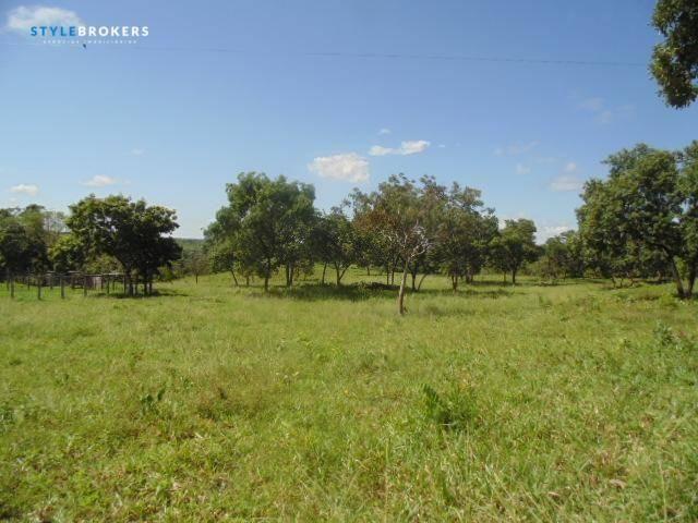 Fazenda à venda, 800000 m² por R$ 550.000,00 - Zona Rural - Nossa Senhora do Livramento/MT - Foto 7