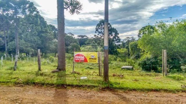 Terreno à venda em Boqueirão, Guarapuava cod:142198 - Foto 4