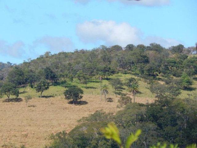 Lindo Sitio de 1500 metros, Em Jaboticatubas - Foto 3