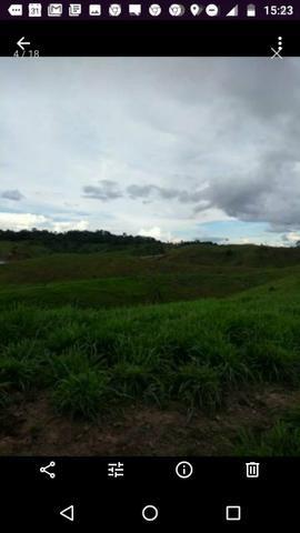 Fazenda ( Colônia) - Foto 11