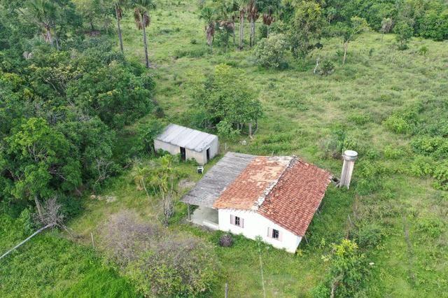 Fazenda no município de faina-GO! 24 Alqueires!