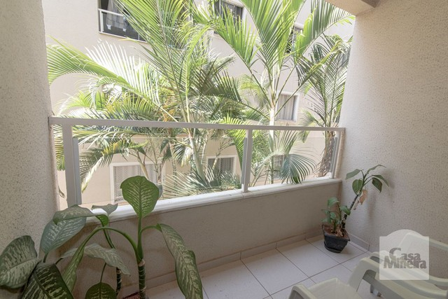 Apartamento à venda com 3 dormitórios em Santa efigênia, Belo horizonte cod:227150 - Foto 4