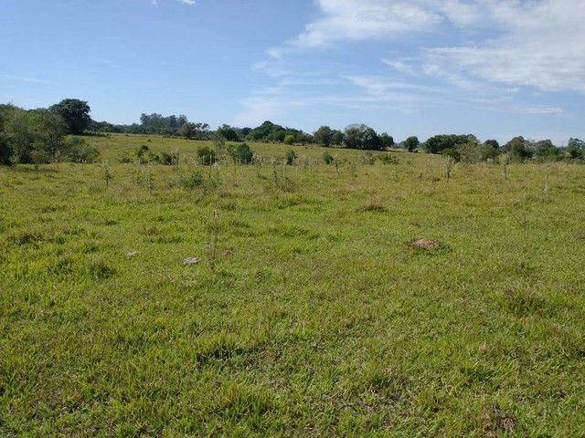 Sítio, Chácara, Fazenda, Lote, Terreno a Venda em Porangaba, Bofete, Torre de Pedra / SP 1 - Foto 7
