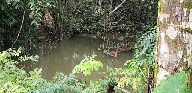 Fazenda 614 hectares documentada - Foto 3