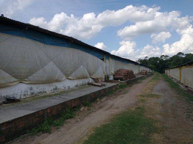 Sítio, Chácara a Venda com 12.100 m², 2 granjas com 13 mil aves cada em Porangaba - SP - Foto 15