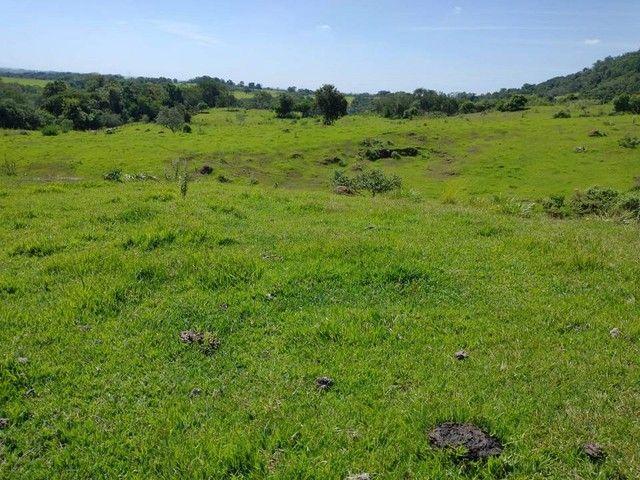 Sítio, Chácara, Terreno a Venda com 77.500 m² 3,2 Alqueres em Bairro Rural - Porangaba - S - Foto 9