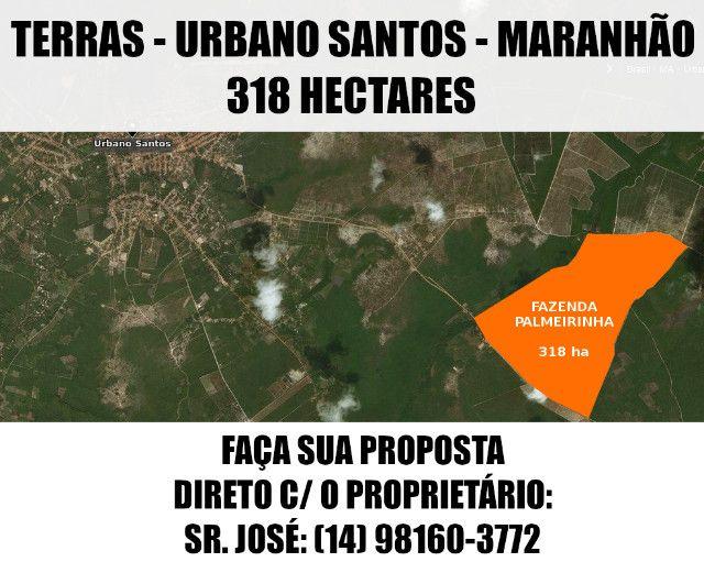 Terras / Fazenda - Urbano Santos (MA) - 318 Ha - Faça Sua Proposta - Foto 16