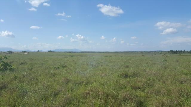 Fazenda de 1700 hectares Amajari. ler descrição do anuncio - Foto 6