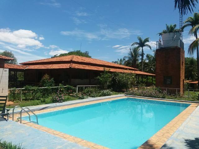Fazenda município Paracatu - Foto 5