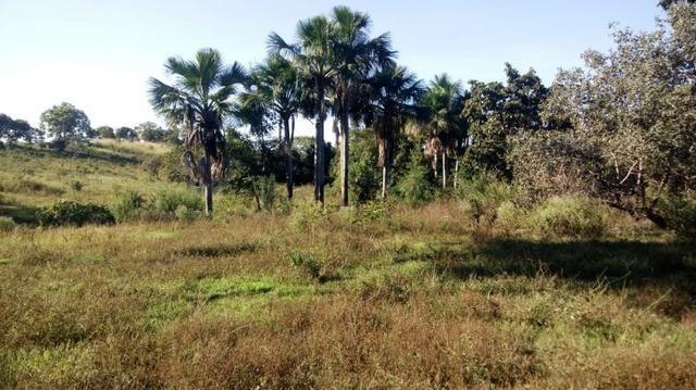 Fazenda no município de faina-GO! 24 Alqueires! - Foto 19