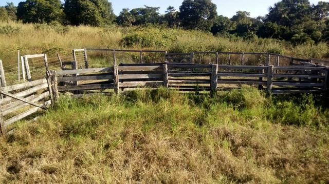 Fazenda no município de faina-GO! 24 Alqueires! - Foto 15