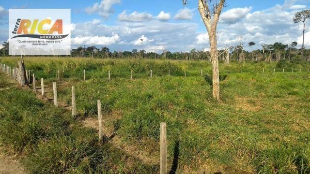 Fazenda com 140 Hectares em Candeias do Jamari/RO à venda, a 14 km da cidade - Foto 11