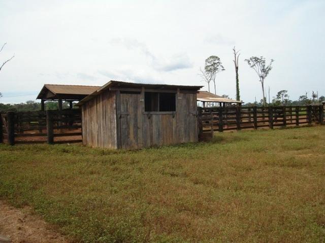 Fazenda região de Juara F0022 - Foto 10