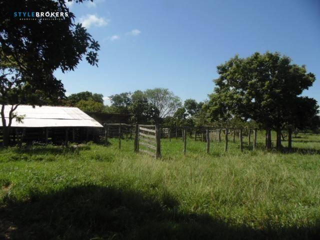 Fazenda à venda, 800000 m² por R$ 550.000,00 - Zona Rural - Nossa Senhora do Livramento/MT - Foto 9
