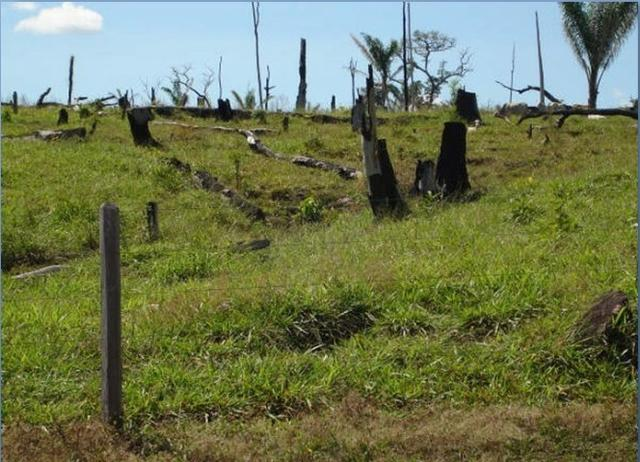 Fazenda região de Juara F0022 - Foto 8