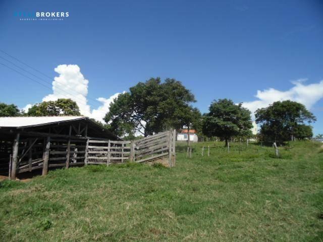 Fazenda à venda, 800000 m² por R$ 550.000,00 - Zona Rural - Nossa Senhora do Livramento/MT - Foto 19