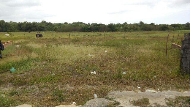 Vendo terreno no monte das oliveiras, Vila Embratel
