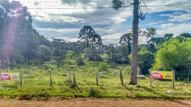 Terreno à venda em Boqueirão, Guarapuava cod:142198