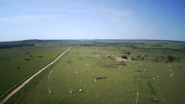Fazenda em Parecis - RO. 4.000 hectares - Foto 9