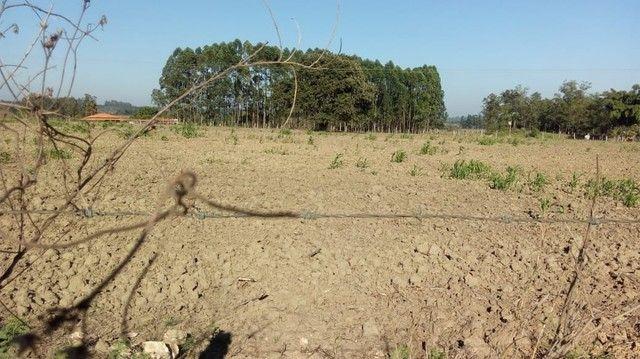 Fazenda, Sítio, Chácara, para Venda em Porangaba com 72.600m² 3 Alqueres, Plano, Limpo, 10 - Foto 11