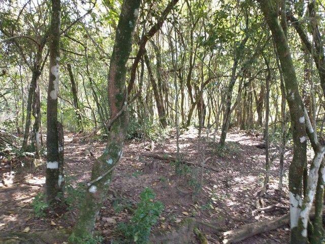 Sítio, Chácara, Fazenda, Lote, Terreno a Venda em Porangaba, Bofete, Torre de Pedra / SP 1 - Foto 4