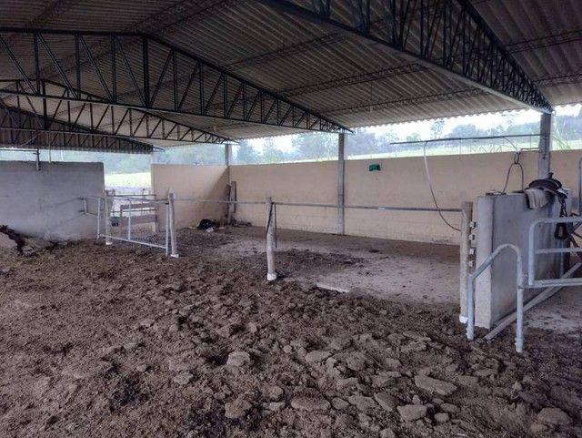 Sítio, Chácara, Fazenda a Venda com 72.600 m², 3 Alqueires, Leiteria, Casa como 2 quartos - Foto 8