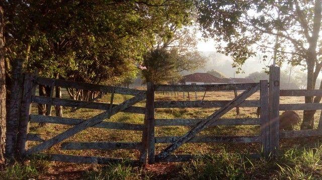 Fazenda, Sítio, Chácara a Venda em Porangaba, Torre de Pedra, Bofete, Área 178.838m² (7,39 - Foto 2