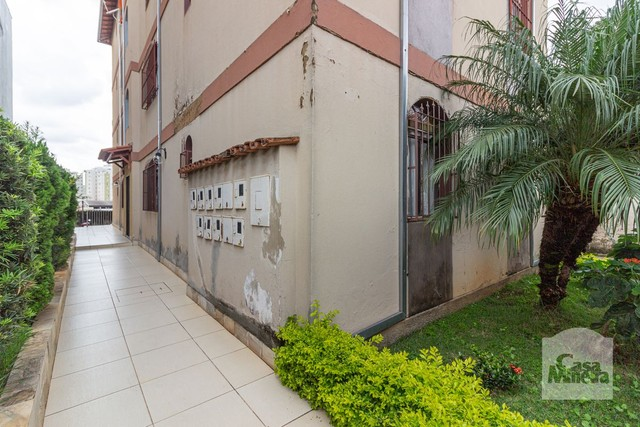 Apartamento à venda com 3 dormitórios em Padre eustáquio, Belo horizonte cod:278135 - Foto 20
