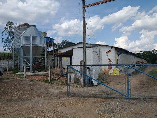 Sítio, Chácara a Venda com 12.100 m², 2 granjas com 13 mil aves cada em Porangaba - SP - Foto 5