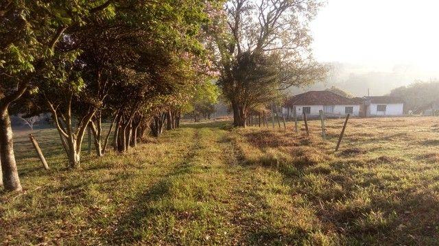 Fazenda, Sítio, Chácara a Venda em Porangaba, Torre de Pedra, Bofete, Área 178.838m² (7,39