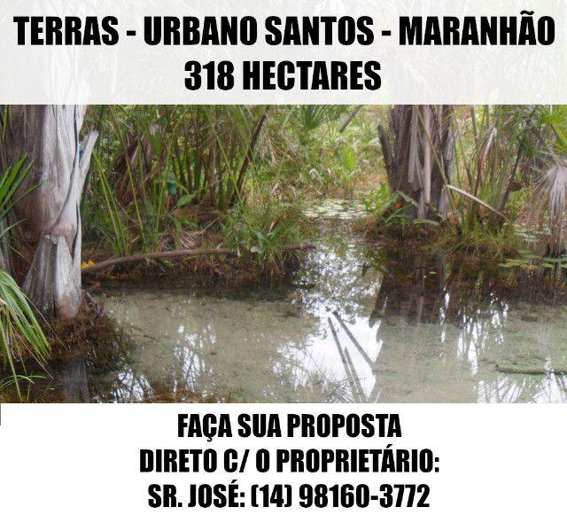 Terras / Fazenda - Urbano Santos (MA) - 318 Ha - Faça Sua Proposta - Foto 11