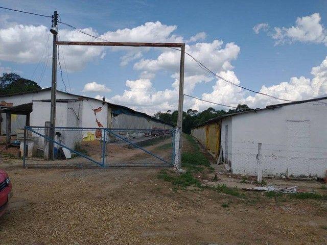 Sítio, Chácara a Venda com 12.100 m², 2 granjas com 13 mil aves cada em Porangaba - SP - Foto 16