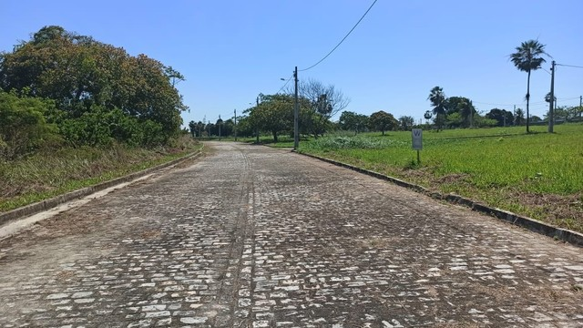 Reserva Camará-{Campanha promocional} - Foto 14
