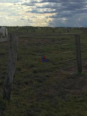 Fazenda a venda no estado do mato grosso - Foto 10