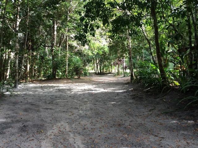RE/MAX Safira aluga casa para temporada em área de preservação, em Trancoso - BA - Foto 20