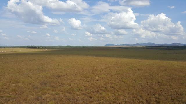 Fazenda de 4250 hectares no Cantá, na Serra da lua, ler descrição do anuncio - Foto 14