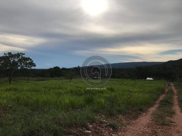 Sítio 11,8 ha na região distrito da guia - Foto 5