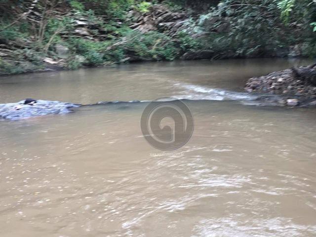 Sítio 11,8 ha na região distrito da guia - Foto 16