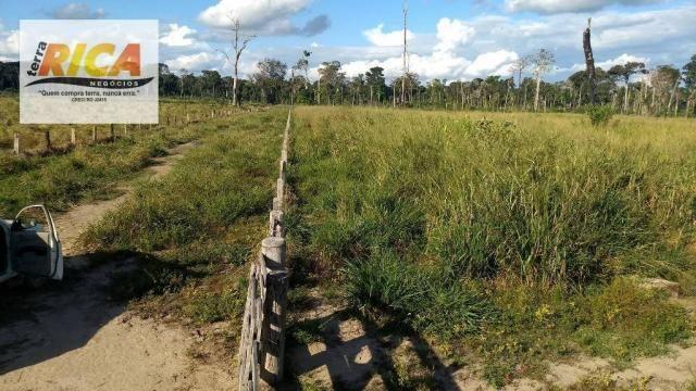 Fazenda com 140 Hectares em Candeias do Jamari/RO à venda, a 14 km da cidade - Foto 14