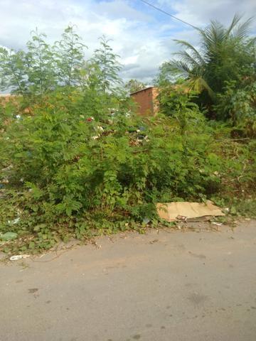 Terreno bairro Dr Fábio 1 - Foto 3