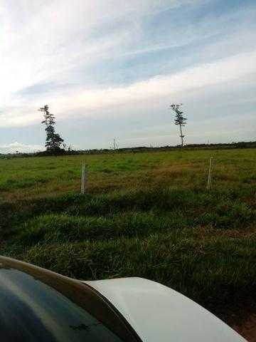 Fazenda 15000 hectares em vila bela, ha 60 km ponte e Lacerda - Foto 6