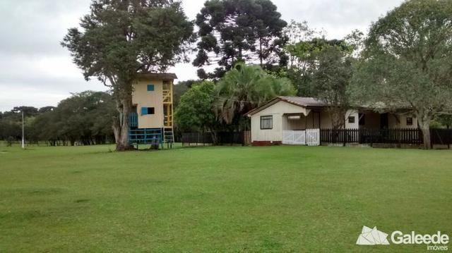 Chacara|Área com 60.000m² em São José dos Pinhais